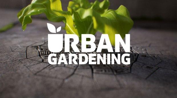 UrbanGardening_zugeschnitten
